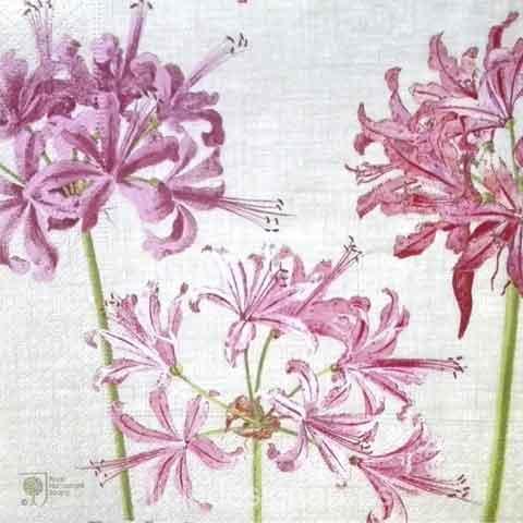 Servilleta para decoupage con flores - Decoracíon de muebles antiguos estilo Shabby Chic, Provenzal, Rómantico, Nórdico