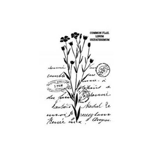 Plantilla de stencil estarcido con motivos vegetales y texto manuscrito de Cadence BN155 - Taller decoración de muebles antiguos Madrid estilo Shabby Chic, Provenzal, Romántico, Nórdico